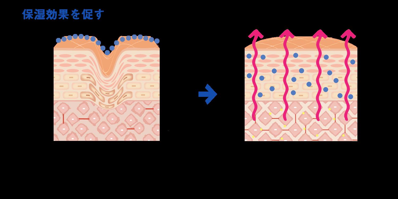 ヒアルロン酸で肌の潤いを保つ
