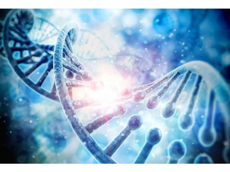 免疫年齢(遺伝子)