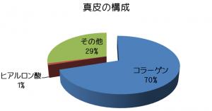 真皮の構成物の比率を示す立体型の円ブラフです。70%がコラーゲン、1%がヒアルロン酸、その他が29%となっています。