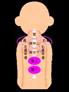 肩こり注射の部位・腰痛セット2パーツの位置を図で説明してます。