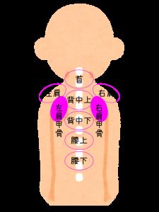肩こり注射の部位・左右肩甲骨2パーツの位置を図で説明してます。