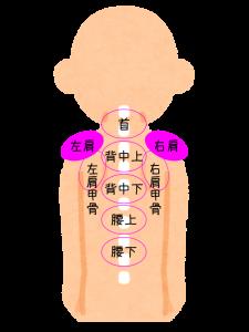 肩こり注射の部位・左右肩2パーツの位置を図で説明してます。
